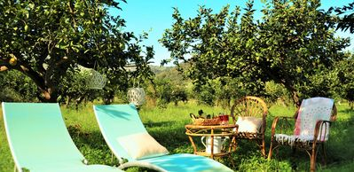 "Photo for House ""Al vico dei lemons"" between the countryside and the sea"