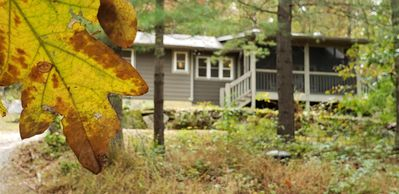 Photo for Hummingbird Vacation Cottage, Dupont State Forest, Cedar Mountain, NC