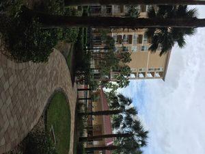Photo for Breathtaking water views from this 6th floor unit face water, Gulf access
