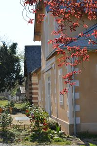 Photo for In the heart of Nantes vineyard in a character house