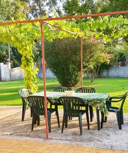Outside dining area underneath the grape vine.