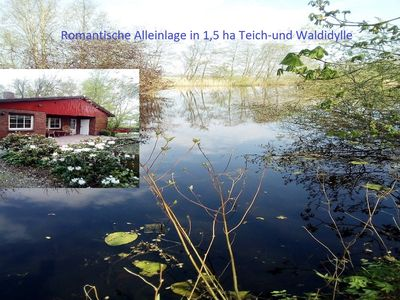 Photo for SEEIDYLLE 1,5ha only for you directly on the lake with its own forest!