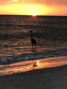 Photo for 3BR Condo Vacation Rental in Madeira Beach, Florida