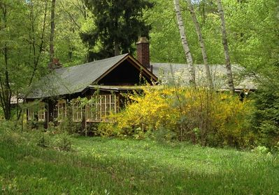 Nestled in the woods this quaint little cottage is the perfect place to relax