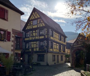 Photo for Coeur d'Alsace 3 in charming half-timbered house