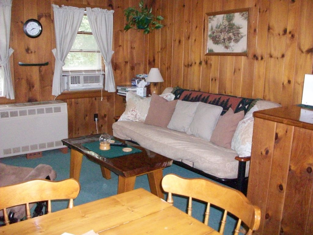 Knotty Pine Living Room W/futon.