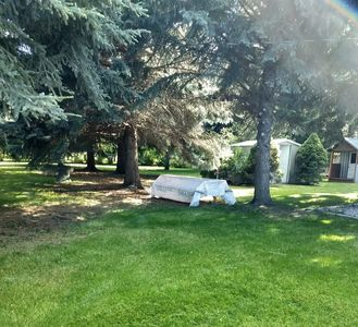 Photo for Peaceful setting with HUGE yard and trees. Close to restaurants & stores