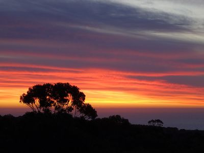 Photo for Isaacs Retreat, Margaret River