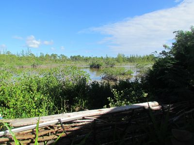 Photo for 1BR Cottage Vacation Rental in Nassau, New Providence, The Bahamas
