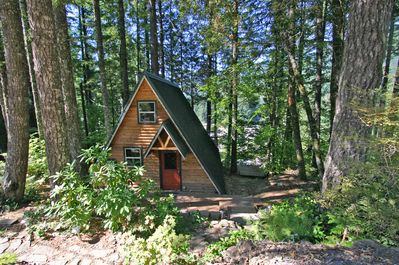 Our sweet cabin that sits in the middle of our own forest.