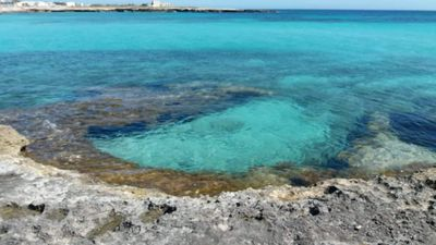 Photo for POSEIDONIA - MONOLOCALE A FAVIGNANA