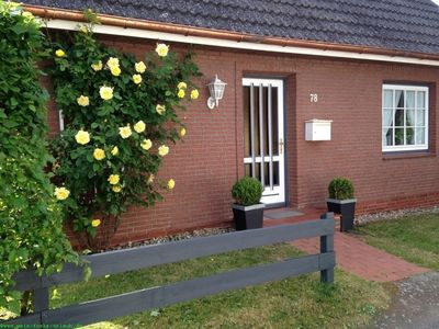 Photo for Apartment / app. for 4 guests with 52m² in Oevenum (109362)