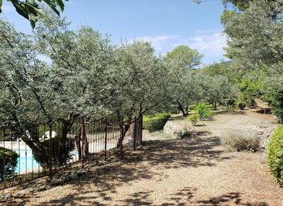 Set amidst 60+ olive trees, landscaped terraces with gorgeous views and pool.