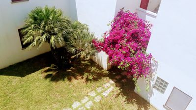 Photo for 2BR Apartment Vacation Rental in TORRE SAN GIOVANNI