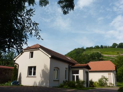 Photo for Holiday home in green with view of the vineyards