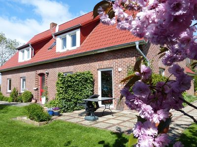 Photo for Apartment / app. for 4 guests with 60m² in Butjadingen (124937)