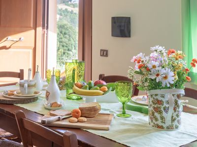 Photo for Apartment in agriturismo near at the most important cities in Umbria