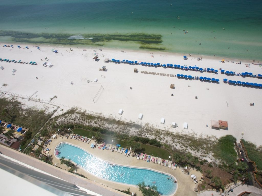 Calypso resort towers 1br bunk 2ba walk 2 pier park free for 1 2 3 4 monsters walking across the floor