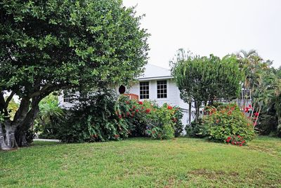Private and secluded, surrounded by bougainvillea and bottlebrush.
