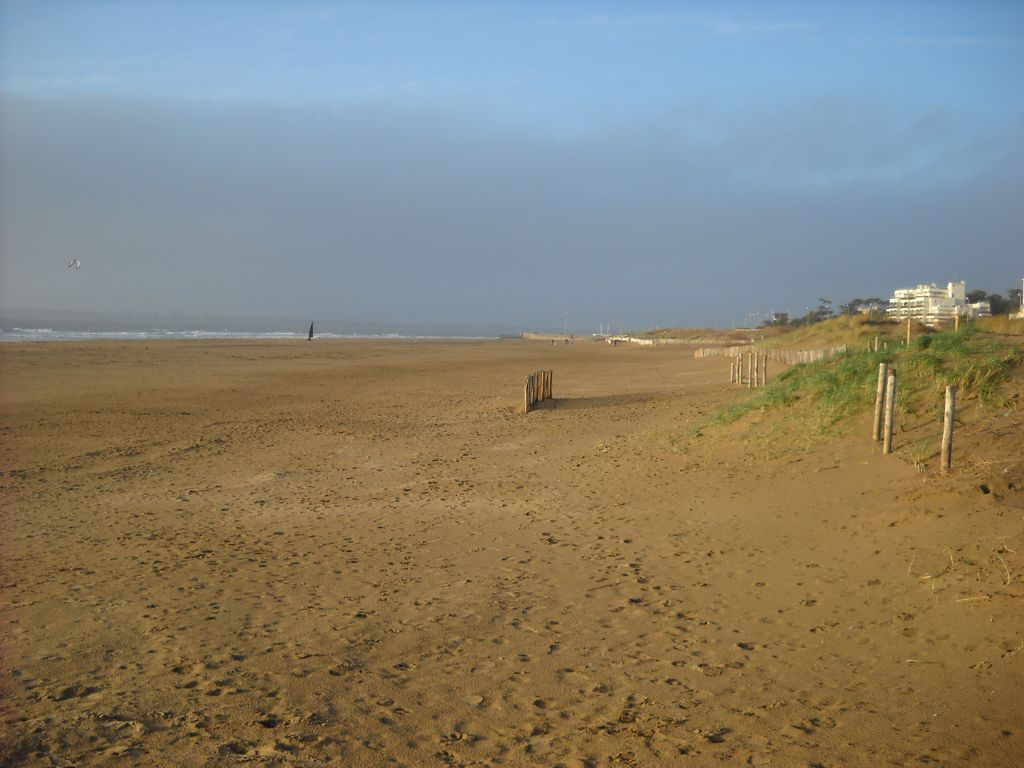 Property Image#4 Family House 200m From A Great Beach Lifeguard, Shops On  Foot