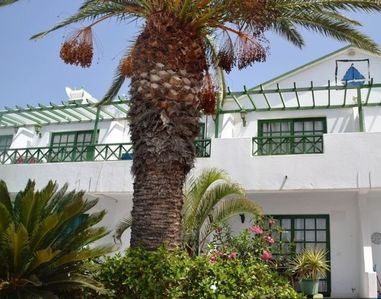 Photo for Lovely 1 bedroom apartment in Puerto del carmen/matogorda with beautiful pool
