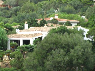 Photo for Sea view independent villa immersed in the green.