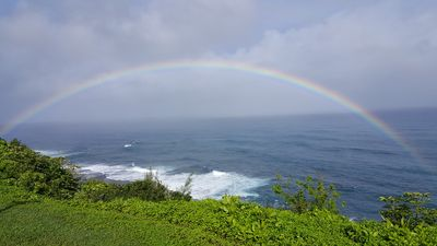 Amazing Kauai 2 BR Condo Ocean View Location ~ Beautiful Interior ~ $250/night