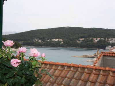 Photo for House Sonja (31411-A1) - Pucisca - island Brac