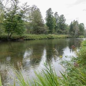 Photo for Private, pet friendly cottage on Rifle River.