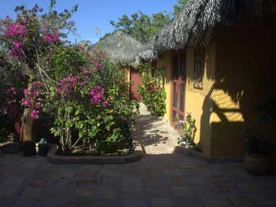 Photo for Cabo Pulmo Marine Sanctuary ~Private Home just steps to the beach. Dive, Snorkel