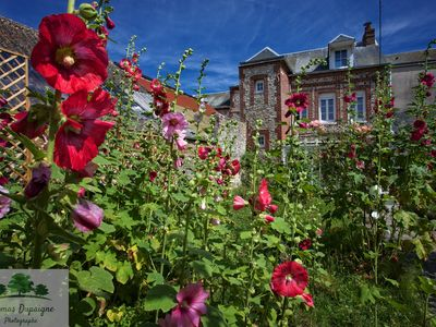 Photo for Charming house, flower garden, in Yport, 50m from the sea, 10km from Etretat