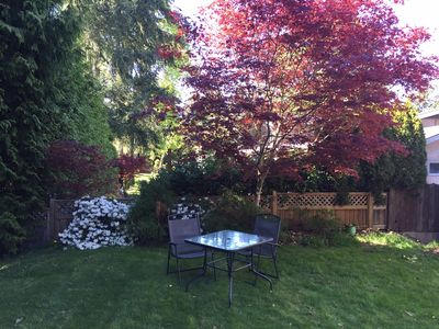 A place for you to sit and enjoy the peaceful backyard