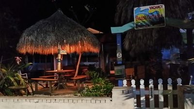 TIki Hut from sidewalk at night with big shell front yard and massive Palm trees