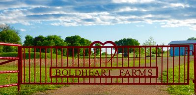 Welcome to The Cottages at Boldheart Farms, Lockhart, Tx