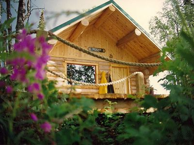Photo for Log Cabin Right on the Kenai River with over 500 feet of riverfront access!