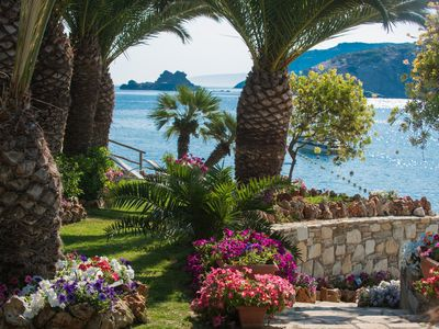 Photo for Beachfront apartments with a majestic garden.
