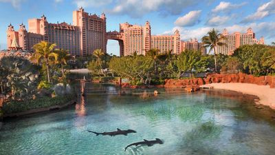 Photo for 6-8 Wristbands Included to Atlantis 7 NIGHT STAYS STARTING FRI/SAT/SUN