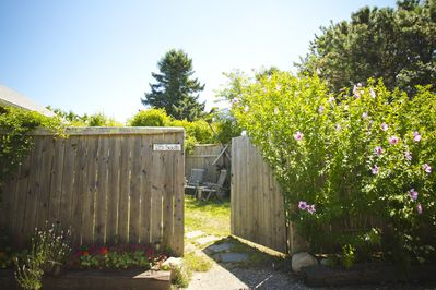 Entrance to the cottage and its private fenced in yard. Rose of sharon in bloom