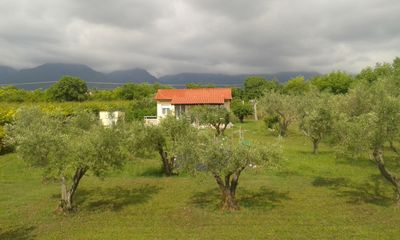 Photo for Relaxing cozy cottage in olive grove, close to the Aegean sea and Mount Olympus