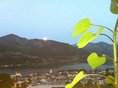 View over Zell am See from the terrace
