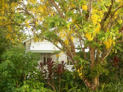 Photo for Historic and cosy cottage in the pretty village of Yungaburra.