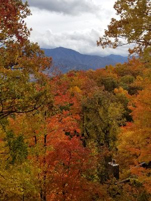 Best views in the Smokey Mountains, Fully decorated, Exceptional Views