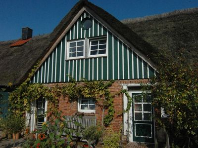 Photo for Thatched Cottage 2 - Alter Obsthof am Elbdeich - Holidays under the thatched roof