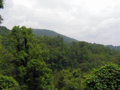 Photo for Carolina Escape-Beauty above the Maggie Valley Country Club