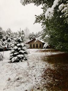 Cozy lil' cottage at the first snowfall, November 2017