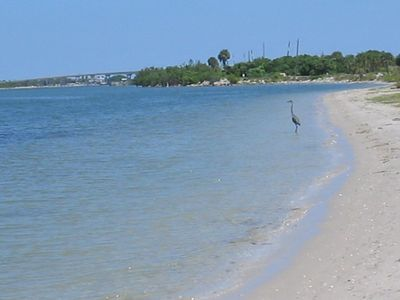 Photo for Perfect Vacation Resort - Private Beach, Golf, Tennis, Pool and More