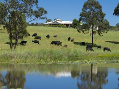 Photo for Stunning farm house with views over paddocks to the National Park.