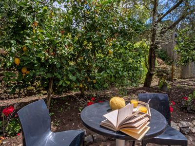 Photo for Apartment Il Bel Panorama in Massa Lubrense - 4 persons, 2 bedrooms