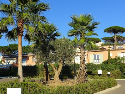Photo for House 971 m from the center of Sainte-Maxime with Parking, Internet, Washing machine, Pool (108803)