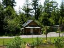 Peaceful locale in redwoods, near gardens